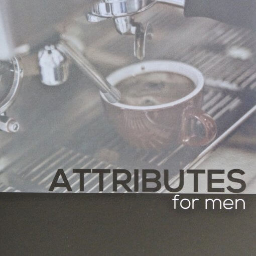 Attributes for Men Bible Study and Videos