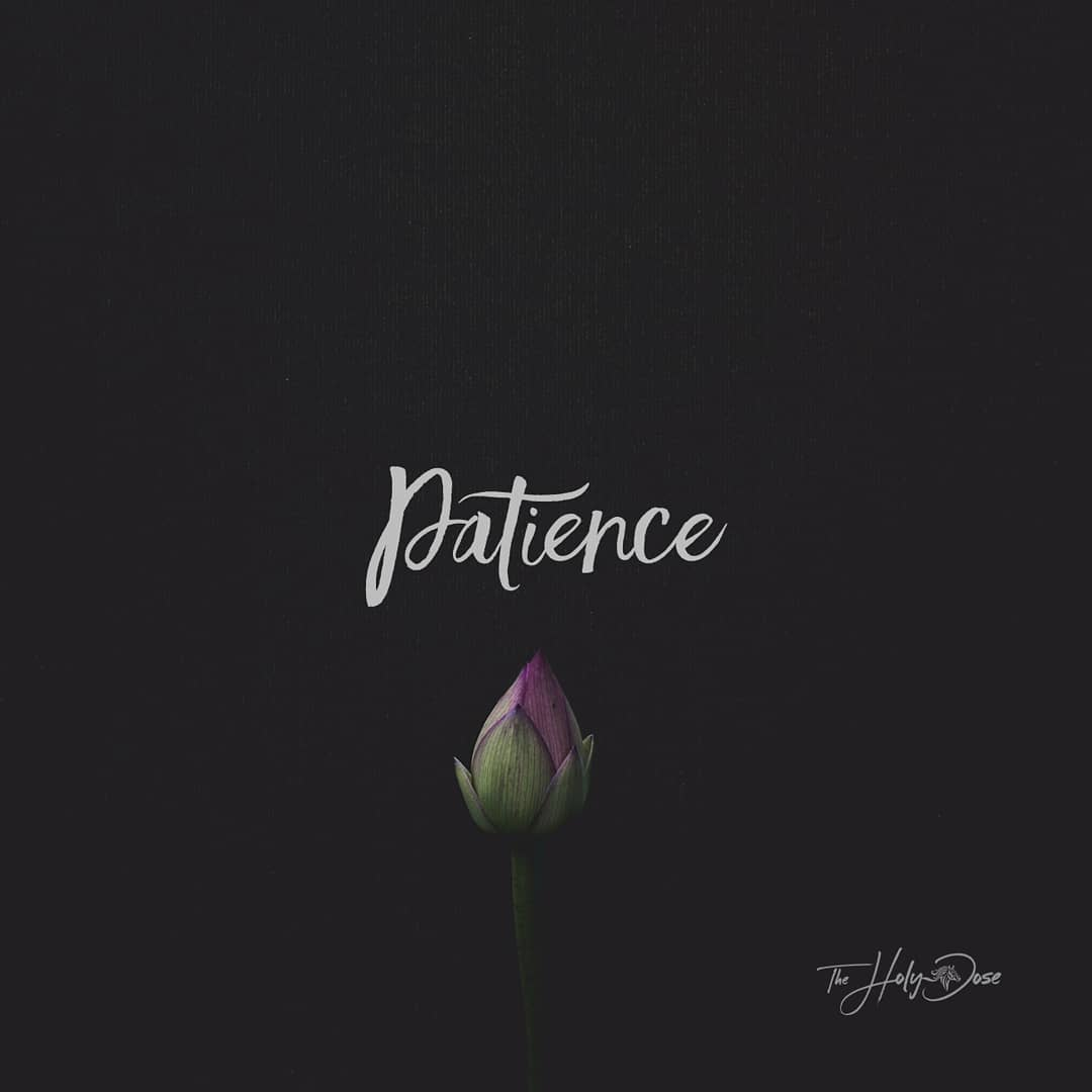 Patience from The Holy Dose