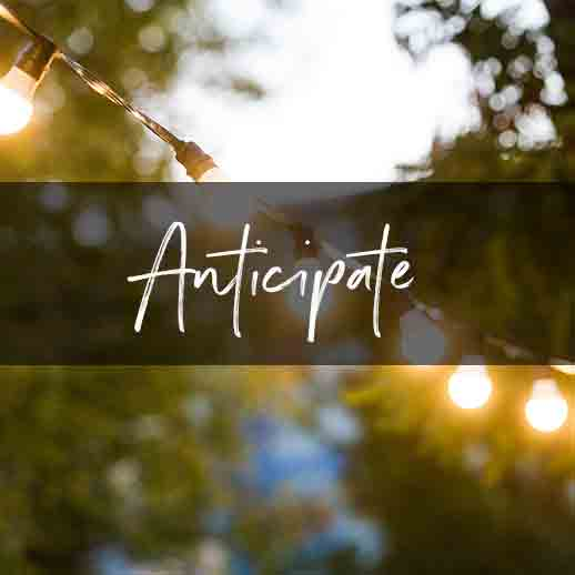 Anticipate-Light-a-daily-devotional-for-advent-by-Vince-Miller