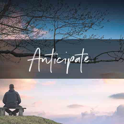 Anticipate-understanding-a-daily-devotional-for-advent-by-Vince-Miller
