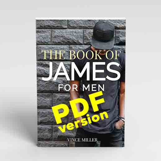 The-Book-of-James-by-Vince-Miller-Cover-Web-Square