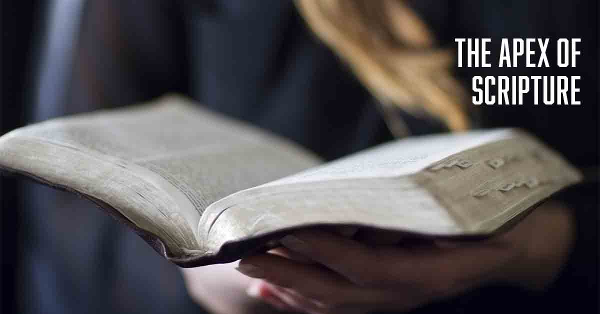 The-apex-of-Scripture-a-daily-devotional-by-Vince-Miller