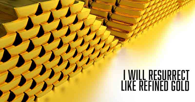 refined like gold a daily devotional by Vince Miller